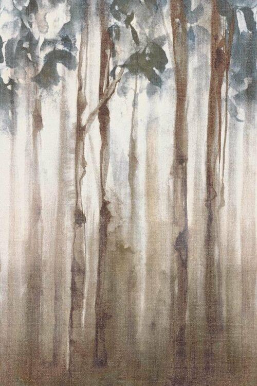 fondovalle-dream-woods-4